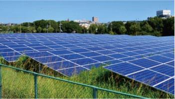 太陽光発電 雑草