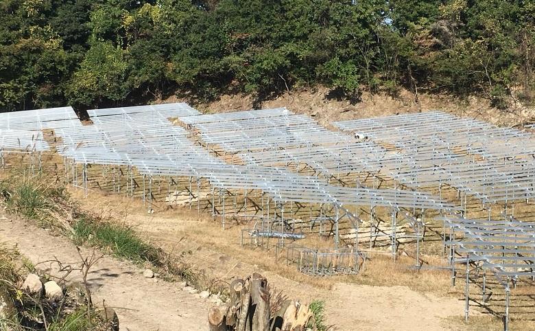 パネル基礎 ソーラーシェアリング