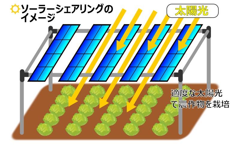 ソーラーシェアリング-イメージ